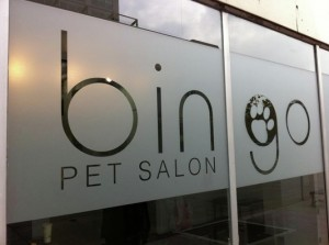 Bingo Pet Salon Storefront