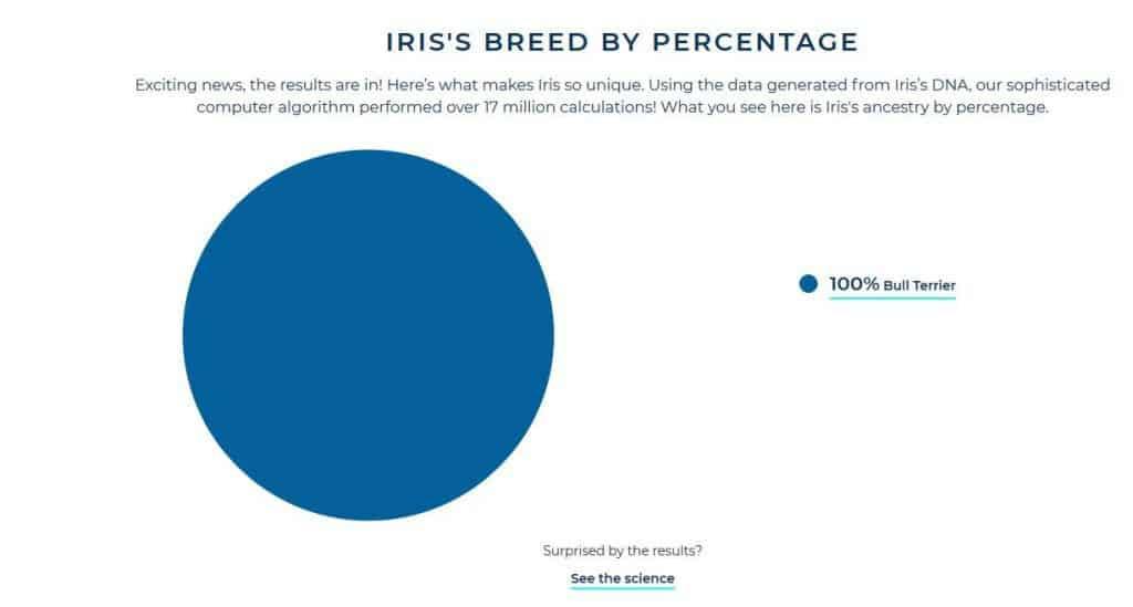 DNA Test result graph 100% Bull Terrier