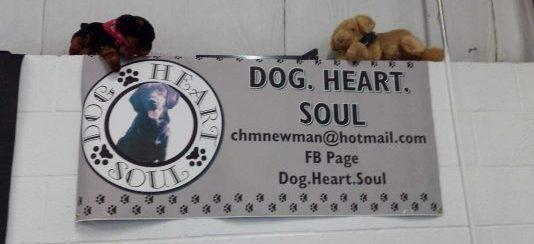 dog.heart.soul banner